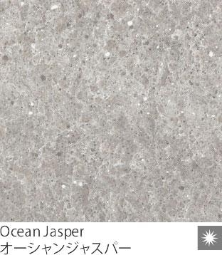 Ocean Jasper