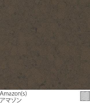 Amazon(s)